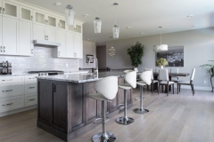 Tulameen-Kitchen_Living-After-e1488916186529