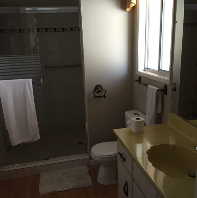 Before-Guest Bath